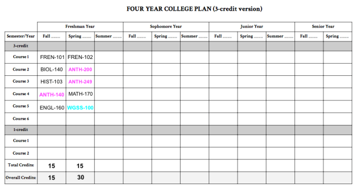 SAMPLE 4-YEAR PLAN